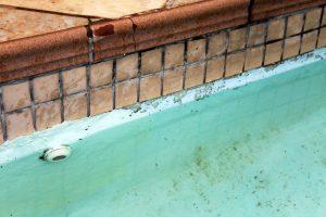 Inground Pool Leak Detection